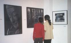 Exposition - la beauté du japon photographiée